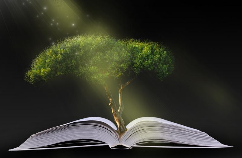 생명나무 열매를 찾아주신 재림 그리스도
